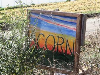 Acorn Sign